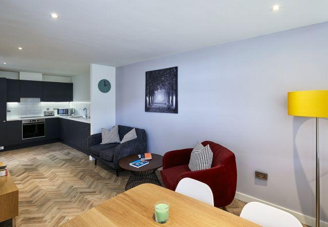 Aparthotel in Dublin - Blackhall Place A10b
